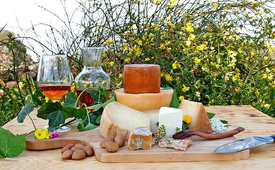 Natürlichen Käse selber machen