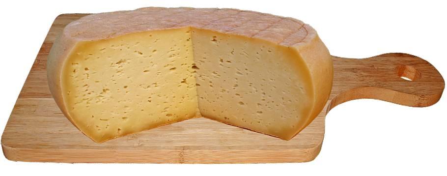 Gouda Käse mit Löchern