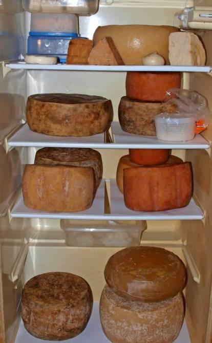 Den Käse kann man sehr gut im Kühlschrank reifen.