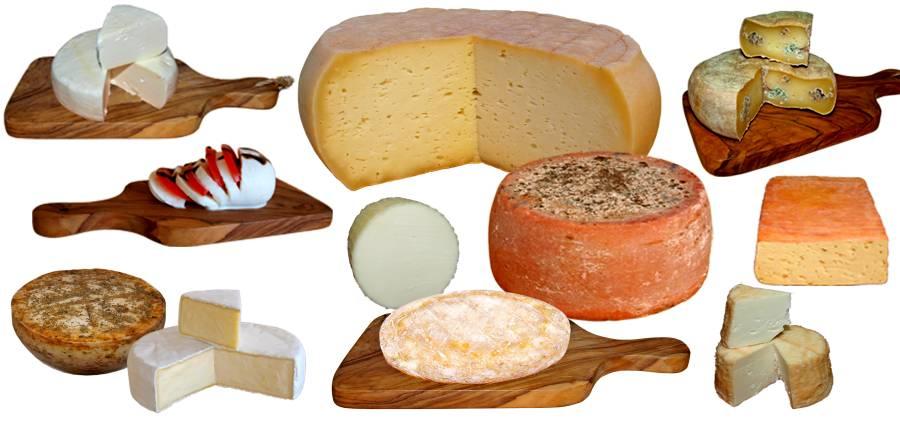 Unterschiedliche Käse selber machen.